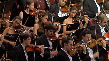 Divan orchestra 2